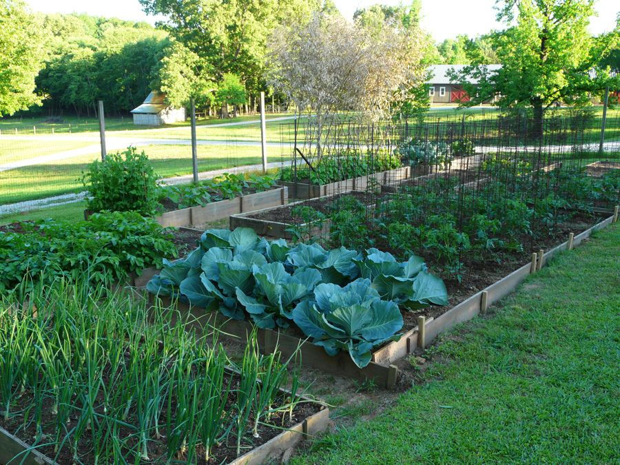 Backyard Farmers And Home Gardeners : Willowdale Farm  About